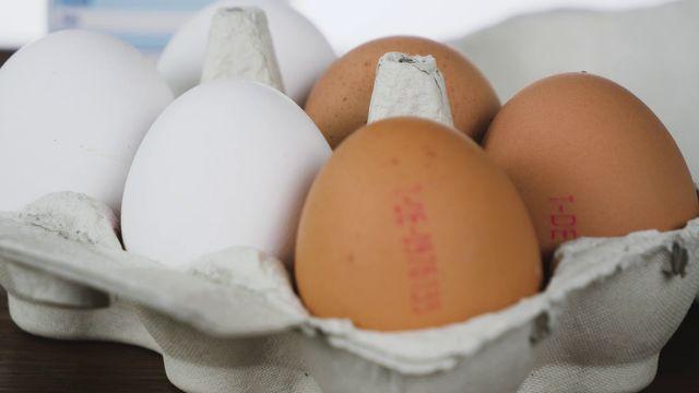 Eier noch gut? So finden Sie es heraus
