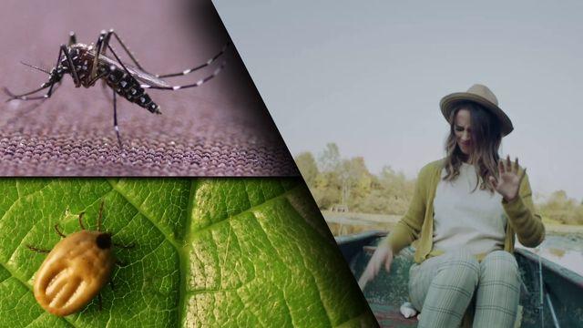 Mücken- und Zeckenschutz bei Stiftung Warentest