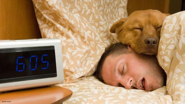 Darf der Hund ins Bett? Das sagt Experte Martin Rütter