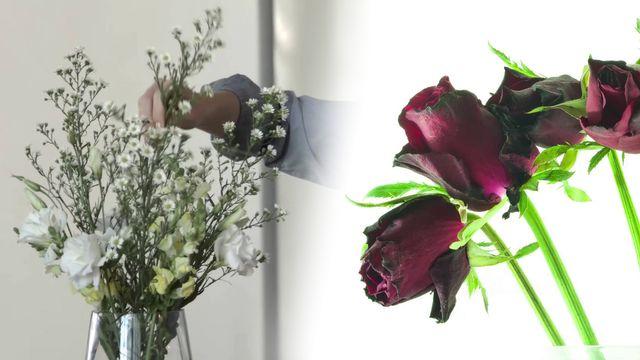 Blumen länger frisch halten