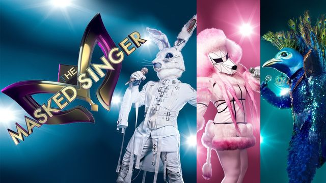 The Masked Singer: Das steckt hinter der skurrilen Show