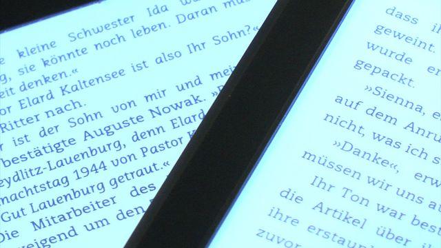 Amazon Kindle Paperwhite 2 - Praxis-Test