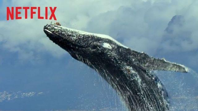 Netflix im April 2019: Die neuen Serien und Filme