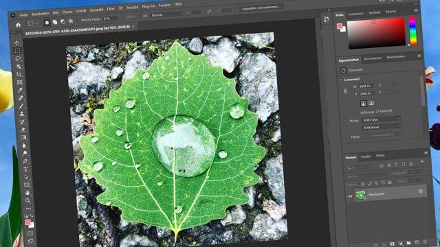 Bildbearbeitungsprogramme im Vergleich: Die besten drei Tools