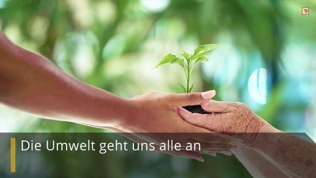 Die kleinen Dinge zählen: So werden Sie zum Umwelt-Helden